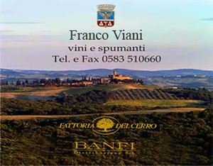 Fanini Group
